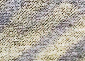 cropped-img_166121.jpg